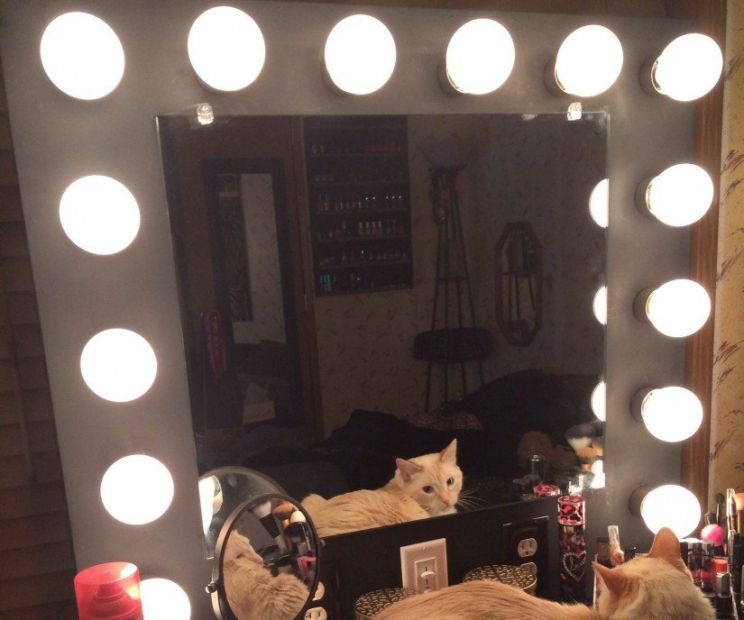 Hollywood Vanity Mirror With Lights | Makeup Vanity Mirror | Dressing Table Mirror With Lights Around It
