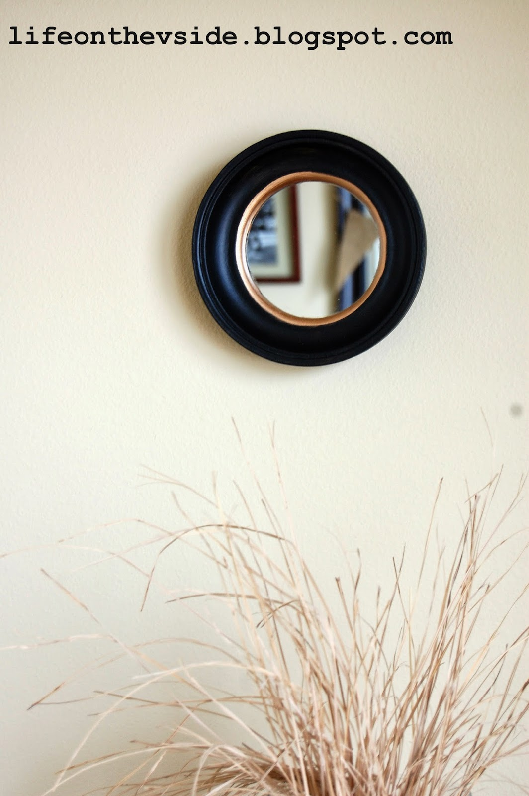 Crate And Barrel Dubois Mirror | Crate And Barrel Mirrors | Door Mounted Mirror