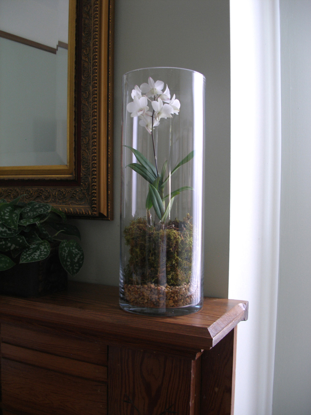 Very Tall Floor Vases | Extra Large Floor Vases | Decorative Tall Floor Vases